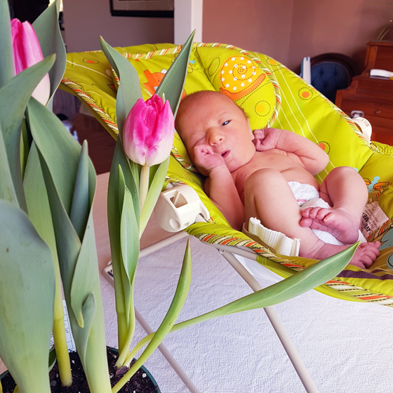 Ellie with pink tulips