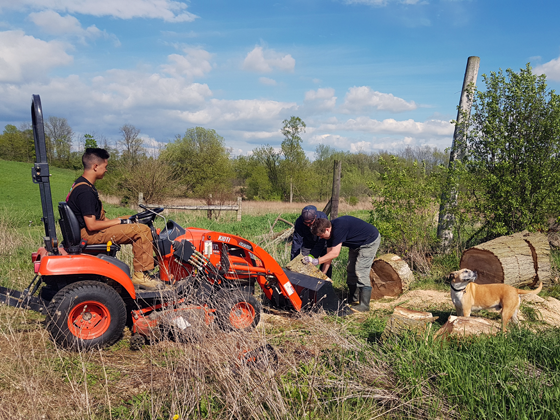 Loading firewood into the tractor bucket