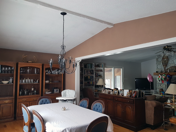 Vaulted ceiling in the dining room