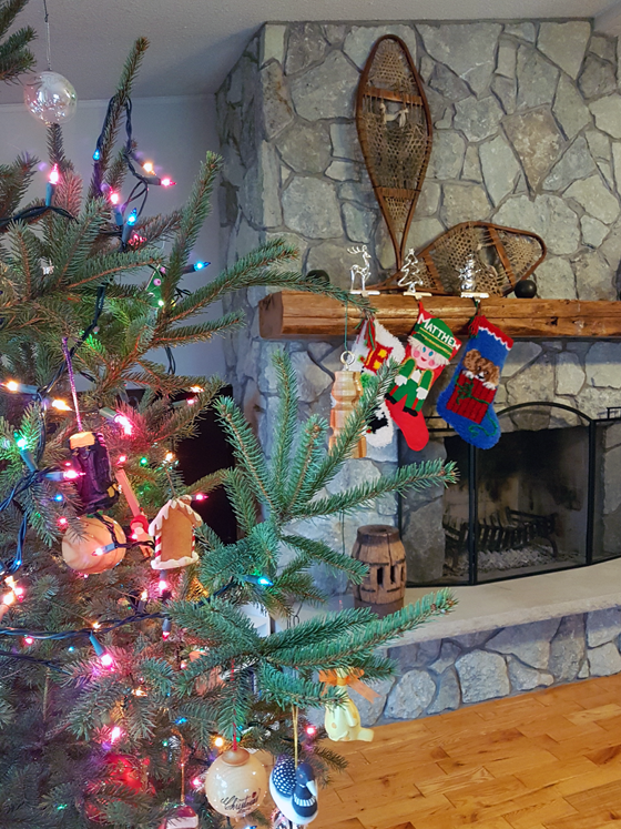 Christmas tree in front of the fireplace