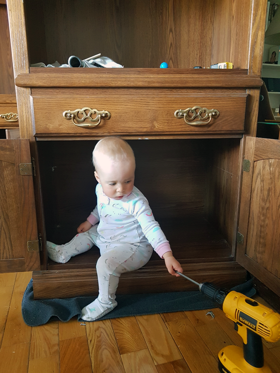 Ellie sitting in the china cabinet