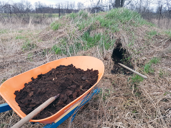Digging into the manure pile