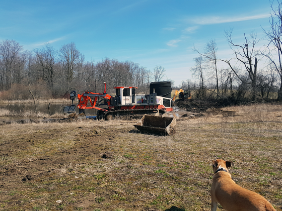 Baxter watching the drainage plow tiling the field