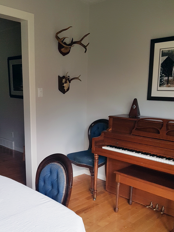 Two sets of antlers hanging in the dining room