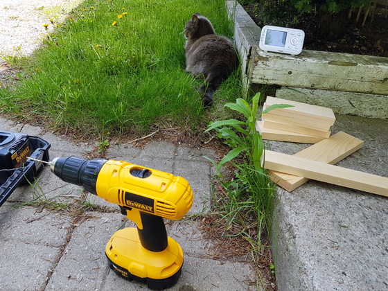 Assembling the stool outside with our barncat