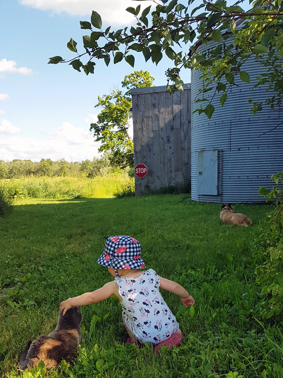 Ellie, Bax and Ralph by the silo