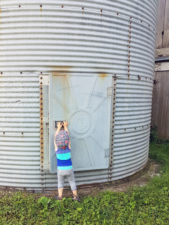 Ellie trying to get in the metal grain silo