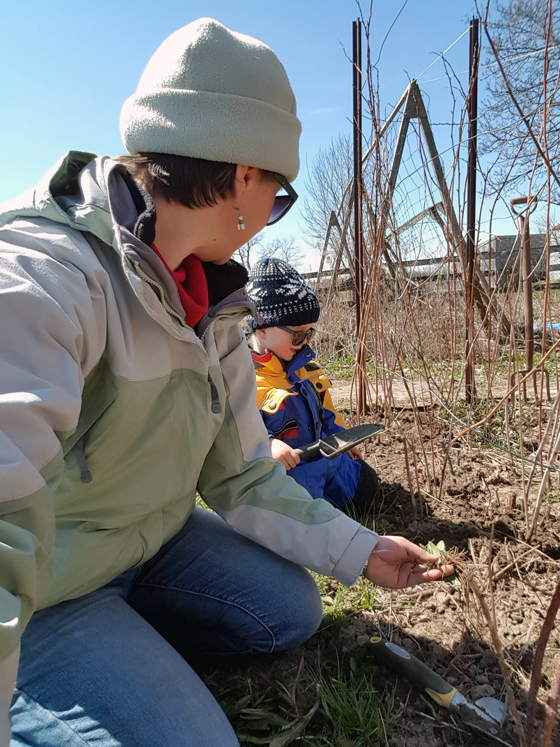 Weeding the vegetable garden with Ellie