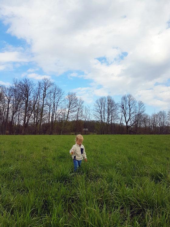 Ellie walking in the field