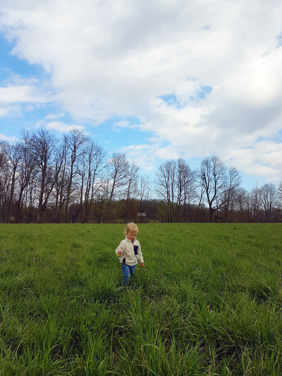 Ellie walking in the field