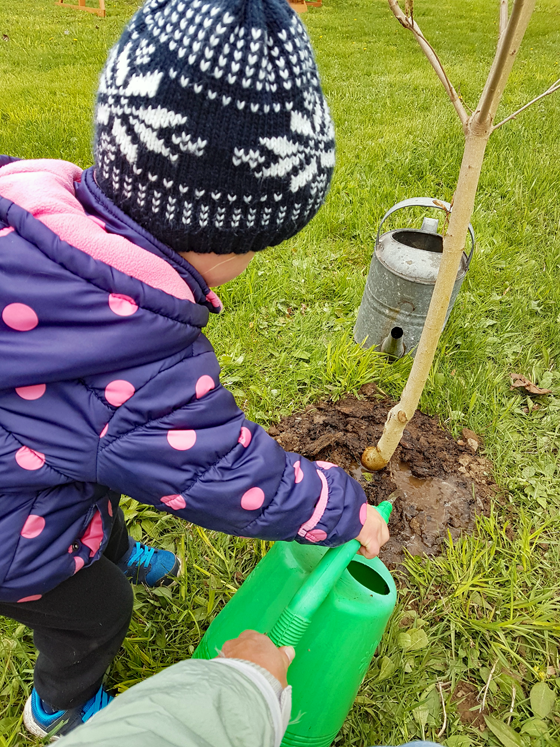 Planting a tree for Mother's Day