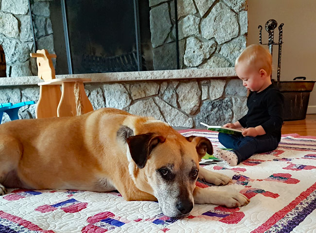 Ellie reading to Baxter