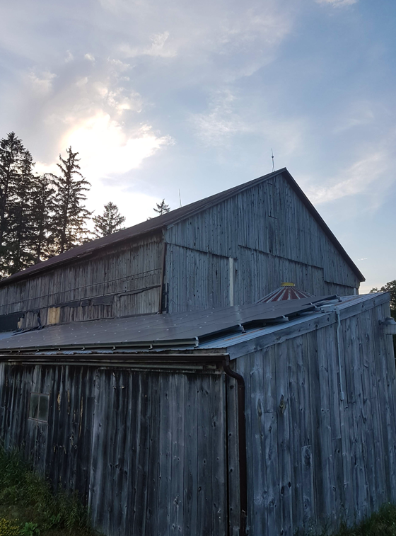 Solar panels on the barn roof